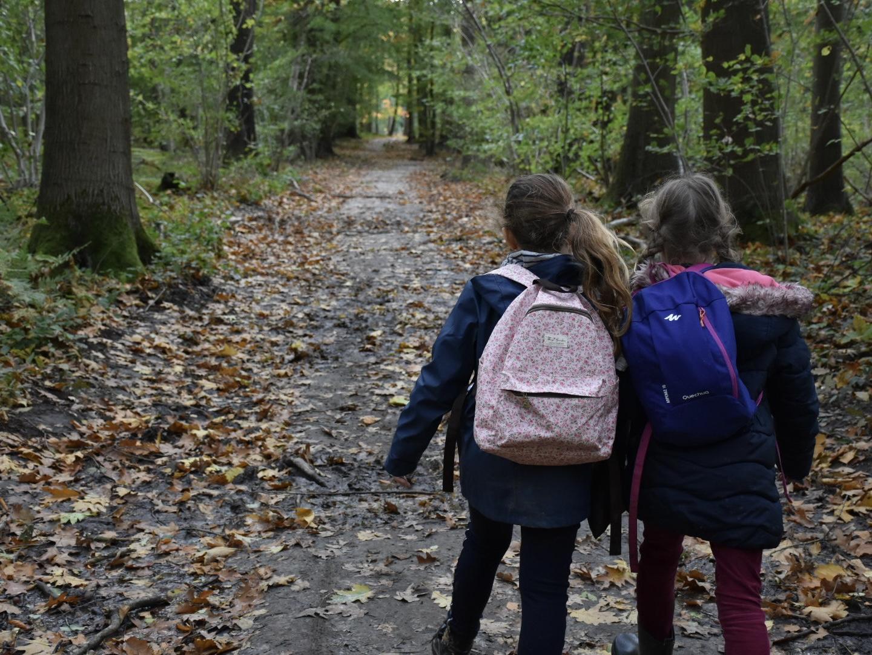 De herfst is al een tijdje in het land. De natuur maakt zich stilletjes aan klaar voor de winter.